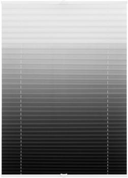 Lichtblick Plissee-Klemmfix Crush-Optik (45 x 130 cm) weiß/grau