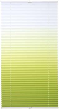 Lichtblick Plissee-Klemmfix Crush-Optik (45 x 130 cm) weiß/grün