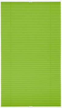 Lichtblick Plissee-Klemmfix Crush-Optik (80 x 210 cm) grün