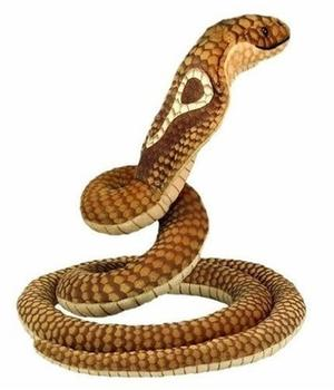 bauer-kobra-14045
