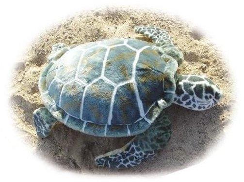 Ebo Meeresschildkröte 60566