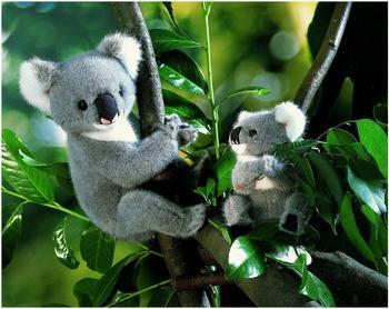 Kösener Koala 23 cm