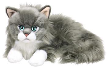 IBTT Ragdoll Katze liegend 28179017