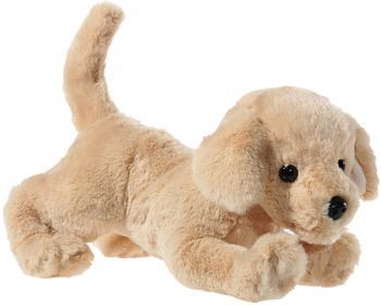 heunec Hund Golden Retriever liegend 301573