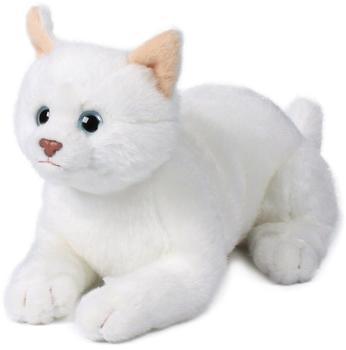 IBTT Katze weiß liegend