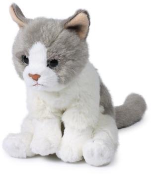 IBTT Katze weiß-grau sitzend