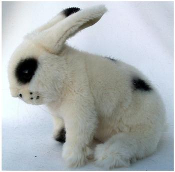 Kösen Kaninchen Flecki, weißKösen