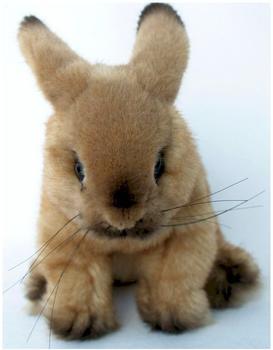 Kösen Kaninchen beige 6981