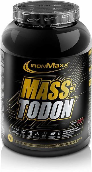 ironMaxx Masstodon