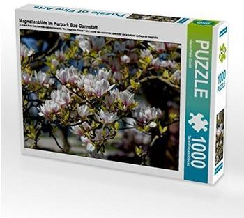 Calvendo Magnolienblüte im Kurpark Bad-Cannstatt 1000 Teile Puzzle quer Calvendo Natur)