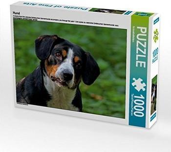 Calvendo Hund 1000 Teile Puzzle quer Calvendo Tiere)