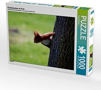 Calvendo Ein Motiv aus dem Kalender Eichhörnchen 1000 Teile Puzzle quer 640x480mm, CALVENDO; 7282163