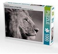 Calvendo Ein Motiv aus dem Kalender Emotionale Momente: Löwengesichter 1000 Teile Puzzle quer Calvendo Tiere)