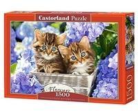 Castorland Cute Kittens 1500 pcs 1500 Stück(e)