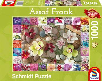 Schmidt Spiele Puzzle Assaf Frank Orchideen