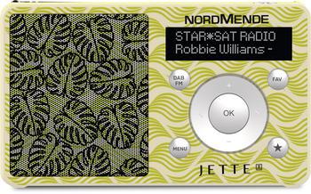 TechniSat TRANSITA 100 by Jette DAB+ Kofferradio UKW wiederaufladbar Grün, Beige