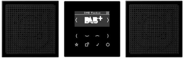 Jung Smart Radio DAB+, Set Stereo DAB LS2 SW