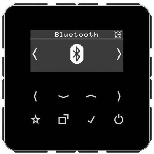 Jung Smart Radio DAB+ Bluetooth DAB CD BT SW Schwarz