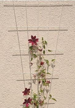 Floraworld Rosenspalier Fächer 150x75cm weiß (692500907)