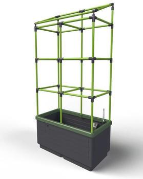 Bio Green CityJungle mit Rankgitter