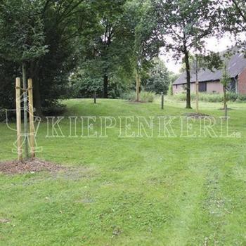 kiepenkerl-rsm-721-landschaftsrasen-trockenlagen-10-kg