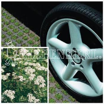 Kiepenkerl RSM 5.1.1 Parkplatzrasen mit 2% Achillia 10 kg