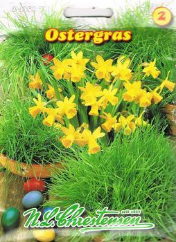 Chrestensen Ostergras 50 g
