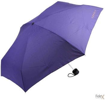 Esprit Petito purple aster