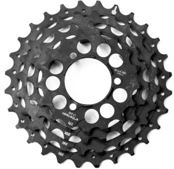 e*thirteen Steel Sprockets TRS+ 10/11-fach black 17-28T