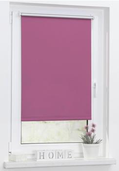 Lichtblick Thermo-Rollo Klemmfix 90 x 150 cm