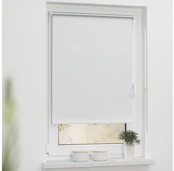 Lichtblick Verdunkelungsrollo Thermo Haftfix 70x150cm weiß