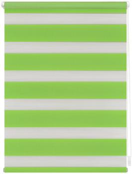 Lichtblick Duo-Rollo Klemmfix 45 x 150 cm grün