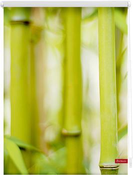 Lichtblick Klemmrollo ohne Bohren Bambus 70x150cm