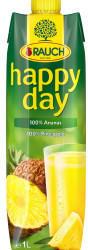 Rauch Fruchtsäfte Rauch Happy Day 100% Ananas (1l)