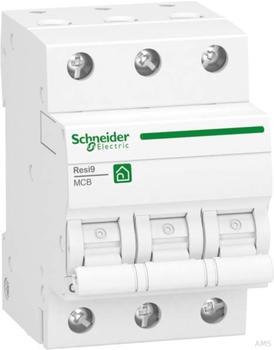 Schneider Electric R9F24325