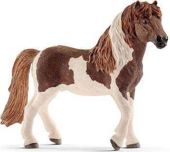 Schleich Island Pony Hengst (13815)
