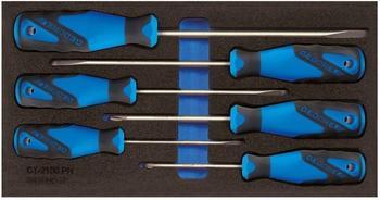 Gedore Schraubendreher-Satz in 1/3 Check-Tool-Modul (1500 CT1-2150 PH)