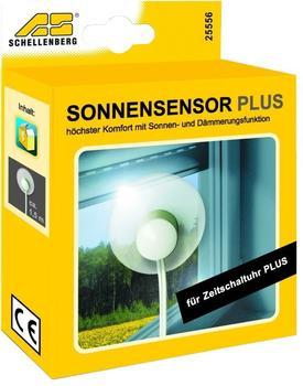 Schellenberg 25556