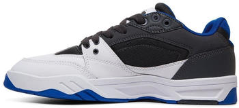 dc-shoes-maswell-black-white-blue