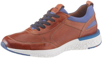 LLOYD Bandos Trainers whiskey