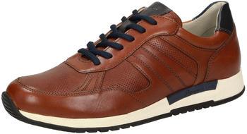sioux-low-top-sneaker-braun-37642
