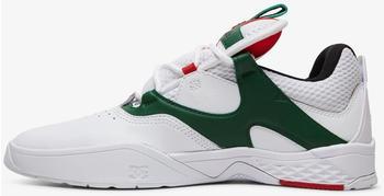 dc-shoes-kalis-se-white-green