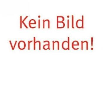 Ideal Gärtnerspaten (10010253)