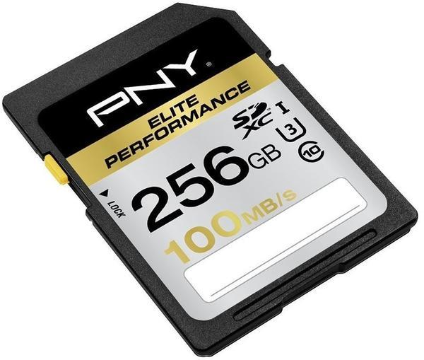 PNY SDXC Elite Performance 256GB Class 10 U3 (SD256ELIPER-EF)