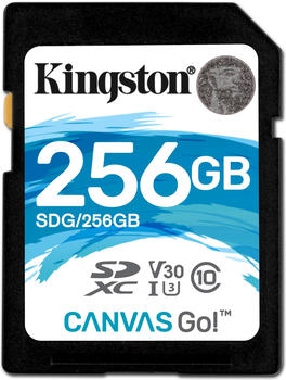 Kingston Canvas Go! SDXC 256GB
