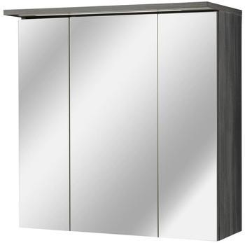 Kesper Spiegelschrank »Sun« Breite 60 cm, mit LED-Beleuchtung grau