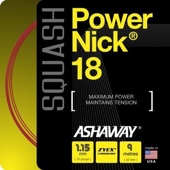 ashaway-powernick-18-110m