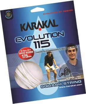karakal-evolution-115-10-m