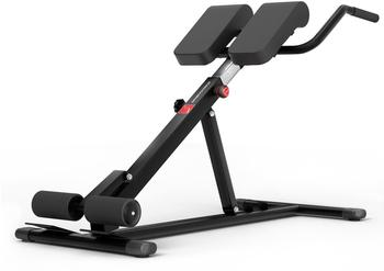 Sportstech Rückentrainer BRT150, 6in1 Rückentrainer und Bauchtrainer, Dip Bar, klappbar schwarz