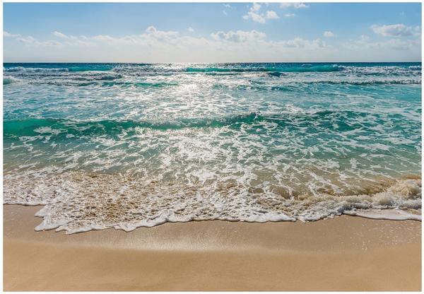 Komar Seaside 254 x 368 cm (8-983)